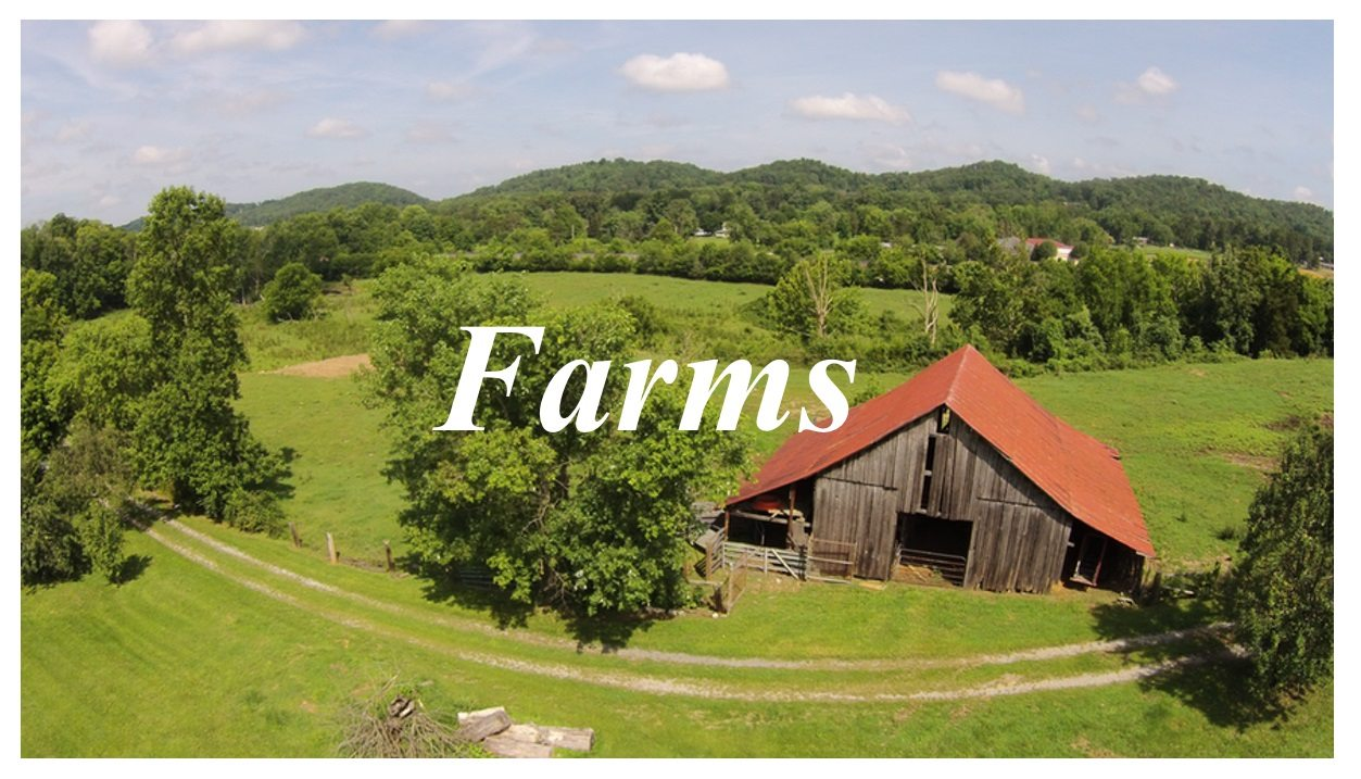 View Farm Listings through Southland Land Brokers
